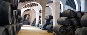 Curiosities of the history of the Sherry wineries (II)